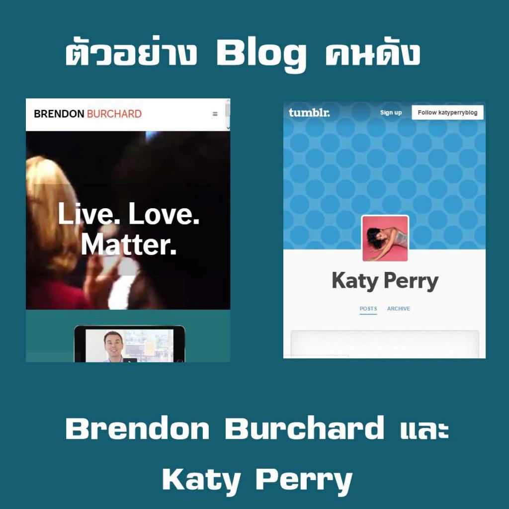 ตัวอย่าง Blog คนดัง